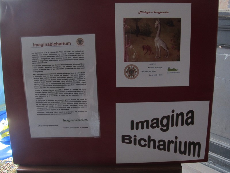 Imaginabicharium (2) (Red)