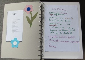 Poesia (10) (Red)