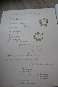 Poesia (2) (Red)